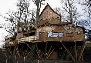 Elaborate Tree House