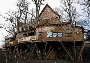 Elaborate Tree House