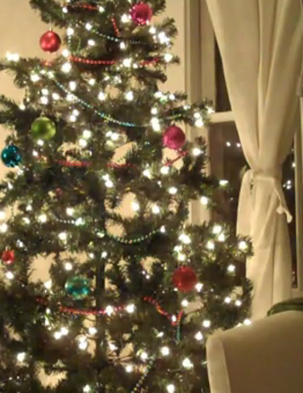 Great Tip to Keep Your Christmas Tree Alive