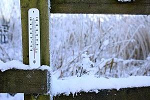 Freezing Temperatures