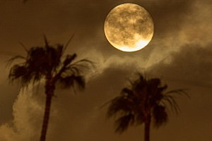 Super Moon Lights Up Night Sky