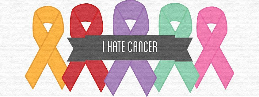 """From the """"I Hate Cancer"""" Facebook Page"""