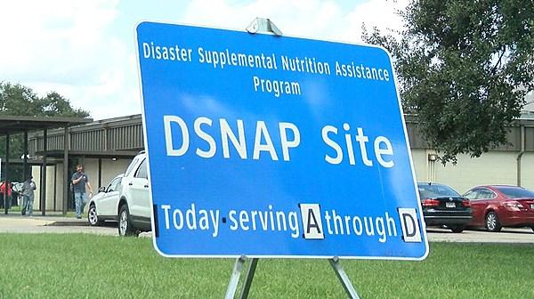 Louisiana Food Stamps News